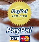 Secure paying with Paypal